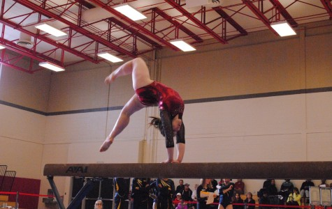 Undefeated gymnastics team heads to state